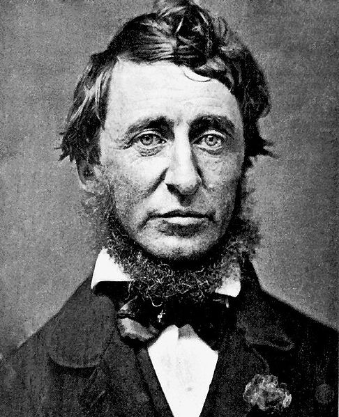 Henry David Thoreau, public domain image